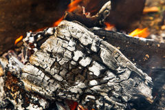 Burning log with smoke Stock Images