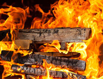 Burning logs Royalty Free Stock Image