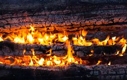 Burning logs in the bonfire Royalty Free Stock Photography