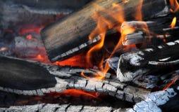 Burning logs in bonfire flames detailed stock photos Stock Photos