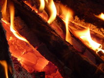 Burning logs Stock Photography