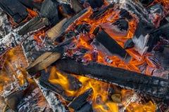 Burning logs closeup Royalty Free Stock Photography