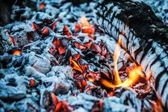 Burning logs and embers in the fire royalty free stock photo
