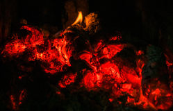 Burning logs Royalty Free Stock Photo