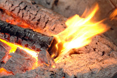 Burning logs in the fireplace Stock Images