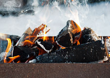 Burning logs in the grill outdoors Stock Photo