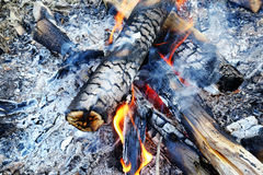 Burning Logs Royalty Free Stock Images