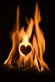 Burning love Royalty Free Stock Photography