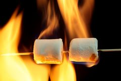 Burning Marshmallow Royalty Free Stock Photography