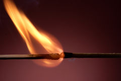 Burning match. A lit wooden match burning down slowly Royalty Free Stock Images