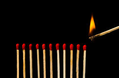 Burning match with row of matches isolated on black background Royalty Free Stock Photography