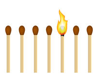 Burning match. Series matches on a white background. it burns out of matches Royalty Free Stock Image