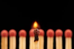 Burning match standing in front of eight red wooden matches. Burning match standing in front of defocused set of eight red wooden matches, isolated on black Stock Images