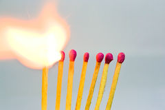 Burning matches Stock Images
