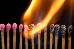 Burning matches in a line Stock Photography