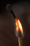 Burning matchstick in the dark. Burning matchstick on black background Royalty Free Stock Images