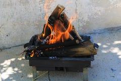 Burning moment of firewood enjoying barbecue at picnic stock photo