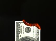 Burning money Stock Images