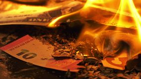 Burning Money on Fire. Financial business crisis concept stock footage