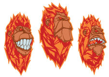Burning monkey heads. Set of vector stickers Stock Images