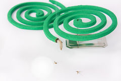 Burning mosquito coil Royalty Free Stock Photos