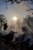 Burning nature Stock Images