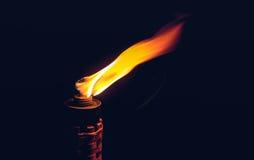 Burning night torch Stock Photos