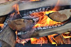 Burning oak firewood in nature. royalty free stock photography