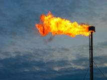 Burning oil gas flare Royalty Free Stock Image