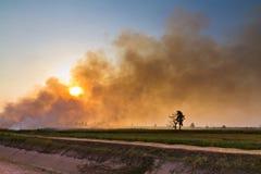 Burning paddy Royalty Free Stock Photo