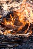 Burning papper Royaltyfria Foton
