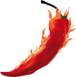 Burning pepper. Asian food flame Royalty Free Stock Photo