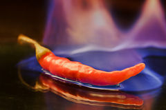 Burning pepper Royalty Free Stock Image
