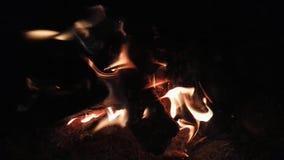 Burning pequeno da fogueira video estoque