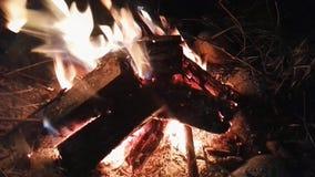 Burning pequeno da fogueira vídeos de arquivo