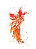 Burning Phoenix on white. Flaming Phoenix on white background, burning bird Royalty Free Stock Photos