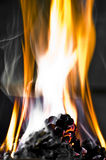 Burning pine cone. Photo of burning pine cones in a barbecue Royalty Free Stock Image