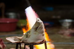 Burning pork head before cleaning in a rural area Royalty Free Stock Images
