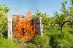 Burning pruning waste Stock Photos