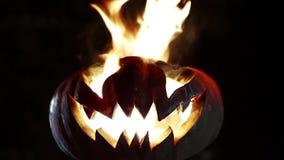Burning pumpkin on Halloween. Looped stock video