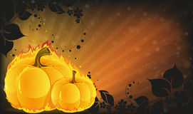 Burning pumpkins on radiant background Stock Photography