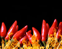 Burning red hot chili peppers Stock Image