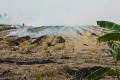 Burning of rice straw. Royalty Free Stock Photos