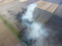 The burning of rice straw in the fields. Smoke from the burning of rice straw in checks. Fire on the field Royalty Free Stock Photography