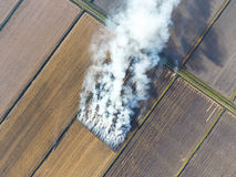 The burning of rice straw in the fields. Smoke from the burning of rice straw in checks. Fire on the field Stock Image