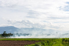 Burning of rice stubble burning straw in rice farmers in Thailan Stock Images