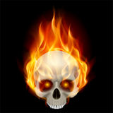 Burning skull. In hot flame. Illustration on black background for design Royalty Free Stock Photos