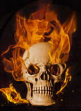 Burning skull. A creepy skull in flames Royalty Free Stock Images