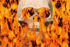 Burning skull. Skull in flames Stock Photos
