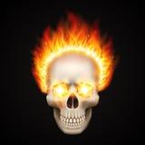 Burning skull on black background. Vector illustration Stock Photos